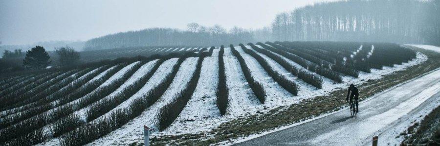 Mads Frank vinter